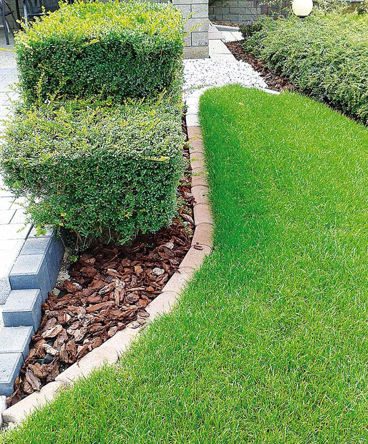 Trávnikový lem predstavuje praktického pomocníka na ukončenie trávnatých plôch. Výhodou je, že nevyčnieva nad úroveň ohraničenej plochy azároveň umožňuje pohodlné kosenie až po okraj. Možno ho použiť aj medzi prístupovým chodníkom atrávnikom, kde vznikne priestor na zeleň (trávnikový lem od spoločnosti Premac, 24 × 4, 5 × 12 alebo 33 × 5 × 16 cm,  2 farby – sivá ahnedá).