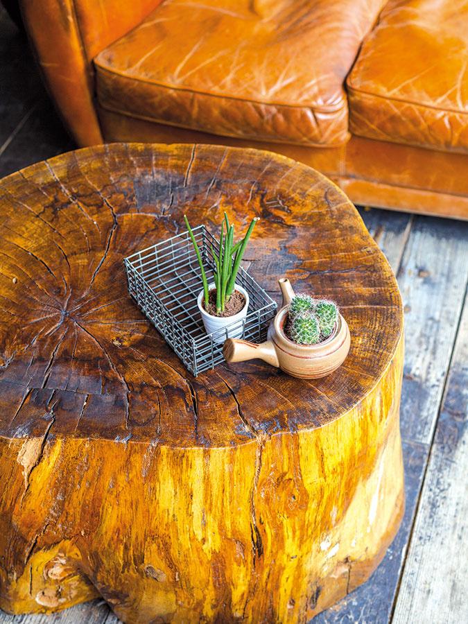 Tón vtóne. Naozaj štýlovým konferenčným či príručným stolíkom sa môže stať aj peň stromu. Ak ho doplníte sedením  zhnedej kože, efektná kombinácia je na svete.