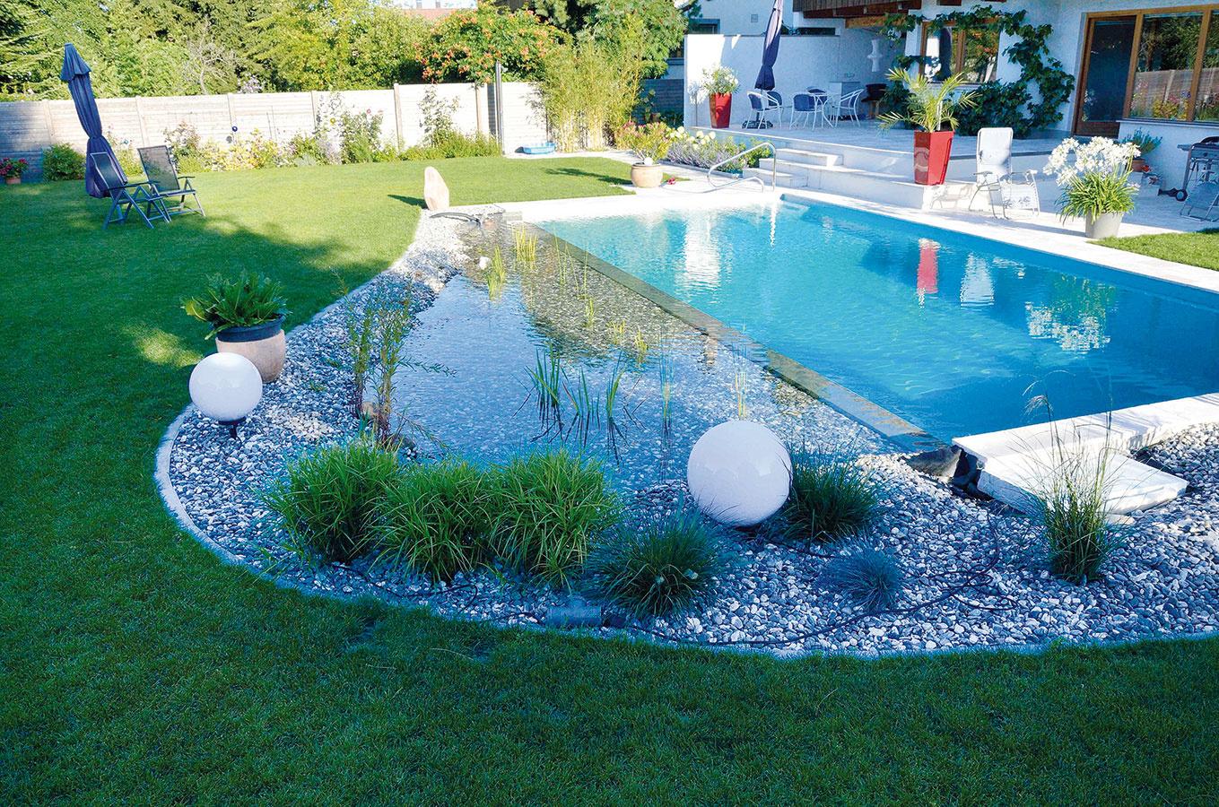 Kúpacia časť jazierka môže mať aj úplne pravidelné línie (obdĺžnikový tvar). Toto riešenie vynikne najmä pri moderných novostavbách. Pri vidieckych domoch lepšie vyniknú kúpacie jazierka s tradičnými nepravidelnými tvarmi.