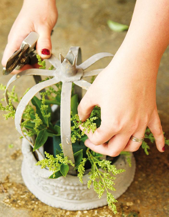 2 Jednotlivé rastliny skráťte záhradníckymi kliešťami na dĺžku asi 10 až 15 cm (podľa veľkosti korunky). Následne môžete začať sich zapichovaním do hmoty. Do stredu nádoby situujte vyššie rastliny, po bokoch zase kratšie. Ako prvý pozapichujte vtáčí zob.