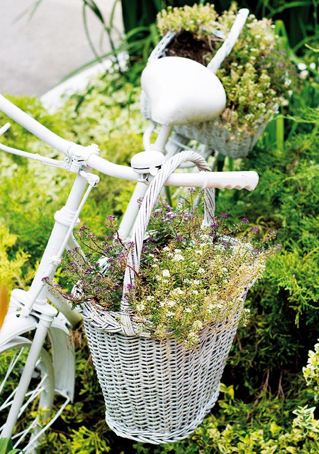 Starý bicykel. Prestriekajte ho vhodnou farbou vspreji aumiestnite do kvetinového záhona tak, aby sa nepoškodili jednotlivé rastliny. Biela pristane najmä vidieckym domom, zvoliť si však môžete aj výraznejšie farby. Biele vysadené košíky zavesené na bicykli sa stanú milým akcentom.