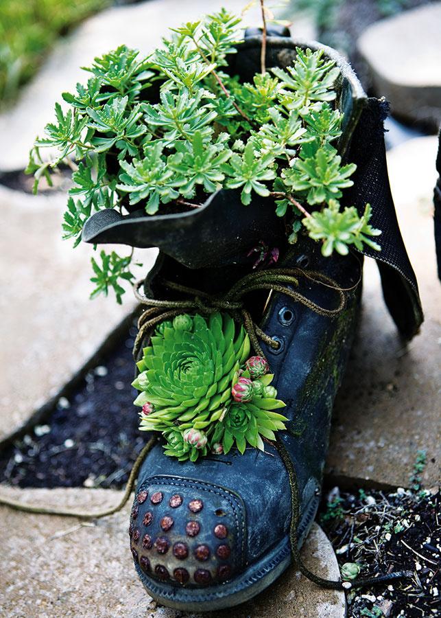 Skrytý potenciál. Staré topánky, čo by inak skončili vodpade, poskytnú domov rôznorodej výsadbe. Pri výbere obuvi však buďte trochu kritickejší – voľte modely, ktoré sú zpevnejšieho materiálu astále držia tvar. Použiť možno šnurovacie topánky, čižmy, ale napríklad aj nepoužívané gumáky.