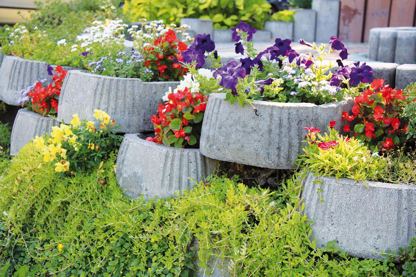 Tvárnice či múriky nie je dobré preplniť, skôr sa žiada vyhradiť každej rastline dostatok miesta, aby mohla vyniknúť vplnej kráse. Obávať sa nemusíte ani výraznejších farebných kombinácií.