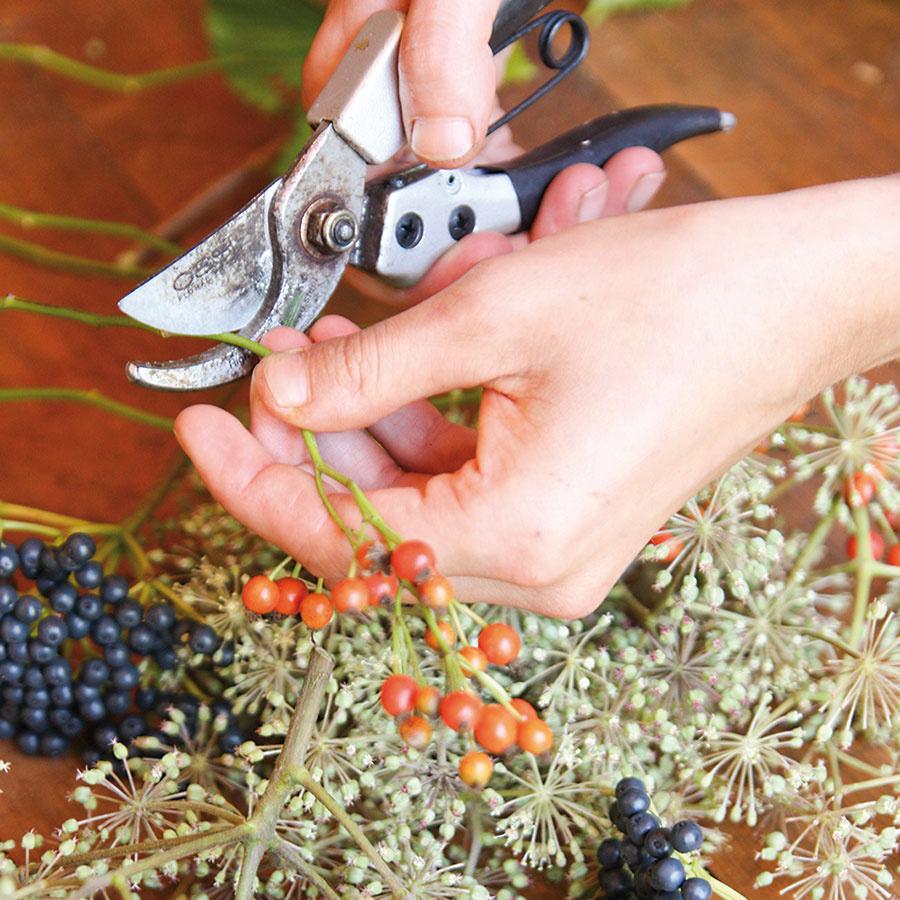 Rastlinný materiál nastrihajte na približne 10 cm dlhé časti. Listy vŕby aduba postačí jednoducho odtrhnúť.