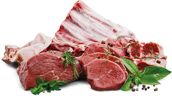 Krmivo by malo obsahovať vysoký podiel kvalitných bielkovín.