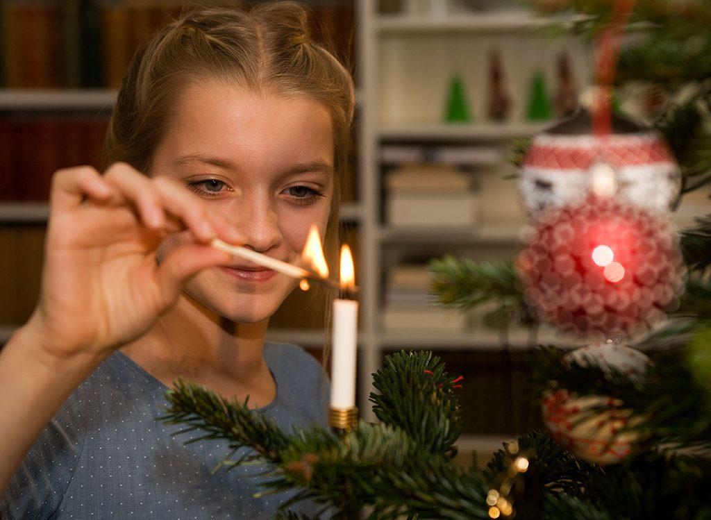 Kaukazská jedľa: tá pravá vôňa Vianoc