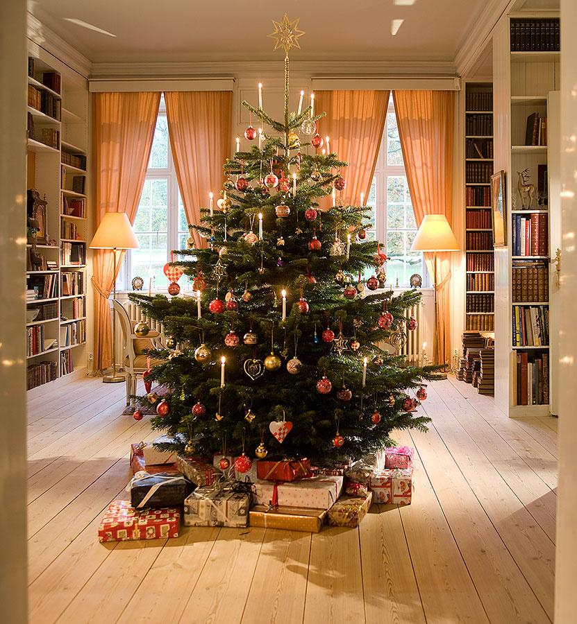 Krásny vianočný strom je jednou zo zásadných položiek na zozname vydarených Vianoc.