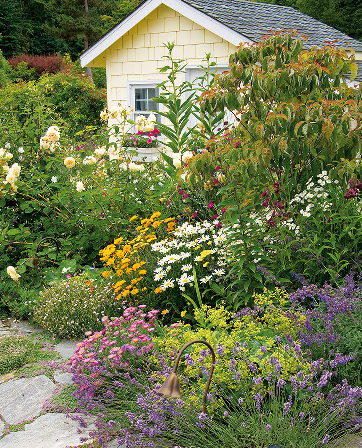 Na prírodno Vo vidieckej slnečnej záhrade zrejme nebude prekážať, ak bude záhradný domček ukrytý v bujnej zeleni. Žiada sa sem vysadiť nielen ruže, ale hlavne rozmanité vzrastovo vyššie kvitnúce trvalky, cibuľoviny a hľuznaté rastliny. Prístup k domčeku by však mal zostať priechodný.