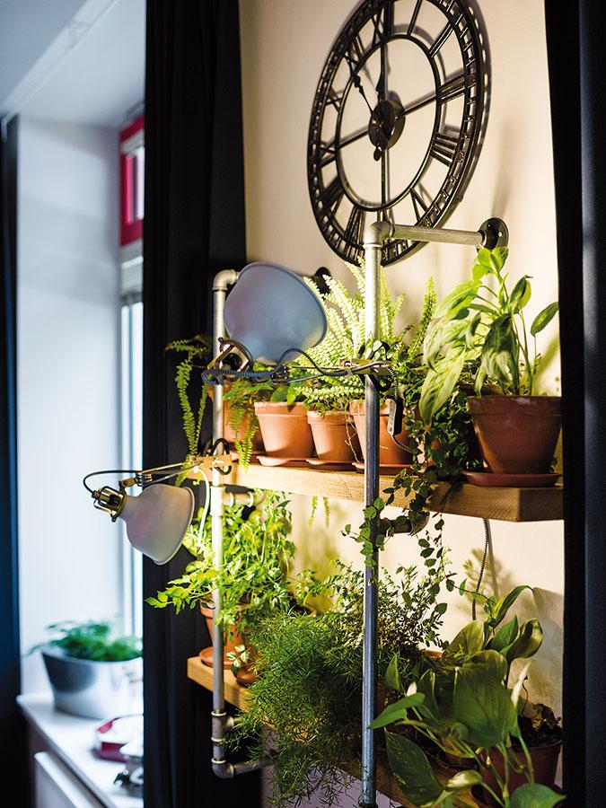 Vzťah majiteľov, ktorí študujú záhradnú architektúru, krastlinám dokazujú aj rôzne vždyzelené rastliny. Svoje miesto majú aj na polici, ktorá je vyrobená zrovnakých rúrok ako stoly.