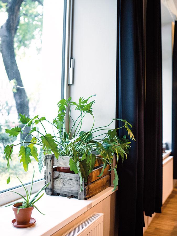 Príjemnou dekoráciou môže byť aj staršia drevená debnička, ktorá zastúpi aj obal na kvetináč. Využiť ju možno napríklad aj na pestovanie byliniek.
