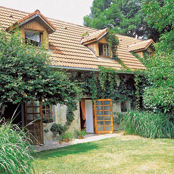 Údržba drevených stavieb a konštrukcií
