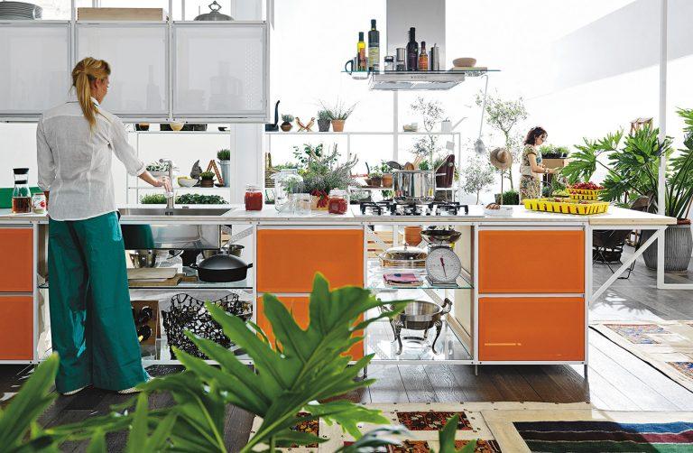 Ktorým rastlinám sa bude vo vašej kuchyni najviac dariť?