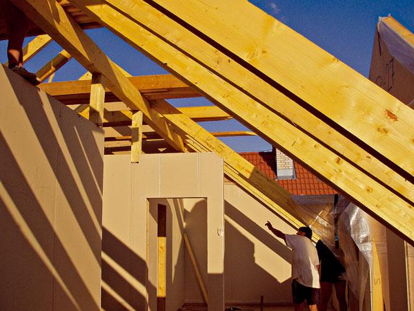 Trvanlivosť dreva a princípy jeho ochrany