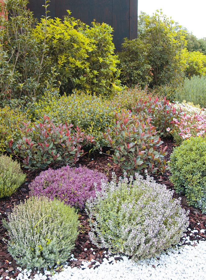 Ak začínate splánovaním záhrady, vytvorte si zoznam, ktorý bude zahŕňať predstavy všetkých členov domácnosti otom, ako záhradu stvárniť (ideálne by mal byť spracovaný do podrobnejších detailov). Ak sa názory rozchádzajú, je dobré zvoliť hneď na začiatku rozumný kompromis. Už vtejto fáze je potrebné rozhodnúť sa, či pôjde ookrasnú alebo úžitkovú záhradu, prípadne oich kombináciu. Súčasný trend je zakomponovať do okrasnej výsadby  aspoň malú úžitkovú plochu, kde možno pestovať vňaťovú zeleninu abylinky. Prirodzene, nie vždy podmienky danej záhrady umožňujú ich pestovanie − viac možností poskytujú slnečné pozemky. Praktické je spísať si obľúbené, resp. želané rastliny, materiály, farby aprvky, ktoré by ste vzáhrade chceli mať.