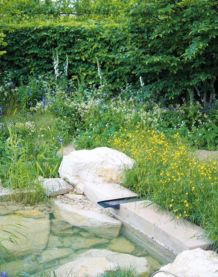 Zakladanie záhrady má svoje pravidlá, zktorých treba vychádzať aj vprípade, ak sa do jej realizácie púšťate sami. Po ukončení stavebných prác, likvidácii nežiaducej vegetácie, navezení novej zeminy anáslednej modelácii terénu môžete začať svytváraním zeleného raja. Ešte predtým je ale dobré vybrať si jeho základné prvky. Naplánovať si treba typ oplotenia (pokiaľ možno nie provizórne), chodníky aspevnené plochy (hlavné aj vedľajšie), elektrické rozvody, prípadne zavlažovacie systémy avodné zdroje. Pri svahovitom teréne netreba zabúdať na oporné múriky aterasy avítané sú tu aj vodné prvky. Plánovanie týchto prvkov treba rozhodne dobre premyslieť. Do ich realizácie sa môžete pustiť hneď, ako sa koncom zimy oteplí.