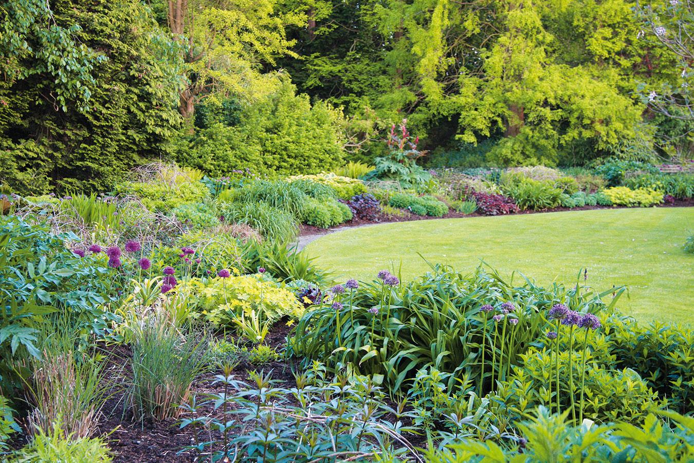 Pri plánovaní výsadby myslite na to, že vprípade trvaliek anižších okrasných tráv lepšie ukážu aspoň tri jedince ztoho istého druhu. Do menšieho záhona je ideálne zakomponovať minimálne tri-štyri druhy kvitnúcich trvaliek aaspoň jeden či dva okrasné listami, prípadne môžete zvoliť zaujímavú okrasnú trávu. Zachovajte pritom pravidlo, že vyššie druhy patria do pozadia anižšie do popredia. Do stredne veľkých aveľkých záhonov sa ponúka zakomponovať aj zaujímavý, nie príliš veľký vlete kvitnúci ker. Vprípade stredne veľkých aveľkých záhrad je rovnako lepšie vytvoriť skupinky krov (opäť aspoň tri jedince). Vzáhrade by nemali chýbať ani stromy, pričom kvitnúce druhy (okrasné jablone, čerešne) môžu byť pekné solitéry. Vmenších záhradách sú vhodnejšou alternatívou menšie, pomaly rastúce dreviny atvarované živé ploty.