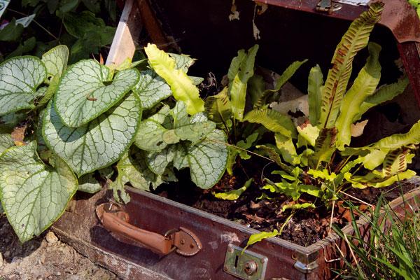 Zpovaly do záhrady
