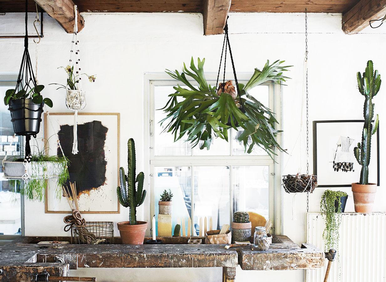 Využitie vertikálneho rozmeru miestnosti je vsúčasnosti pri dotváraní interiéru rastlinami mimoriadne obľúbené. Populárne sú nielen vertikálne výsadby na stenách či vpriestore, ale aj rôznorodé závesné kvetináče, ktoré môžu visieť aj priamo zo stropu. Zaujímavé kvetináče od značky Madam Stoltz nájdete na www.bellarose.sk.