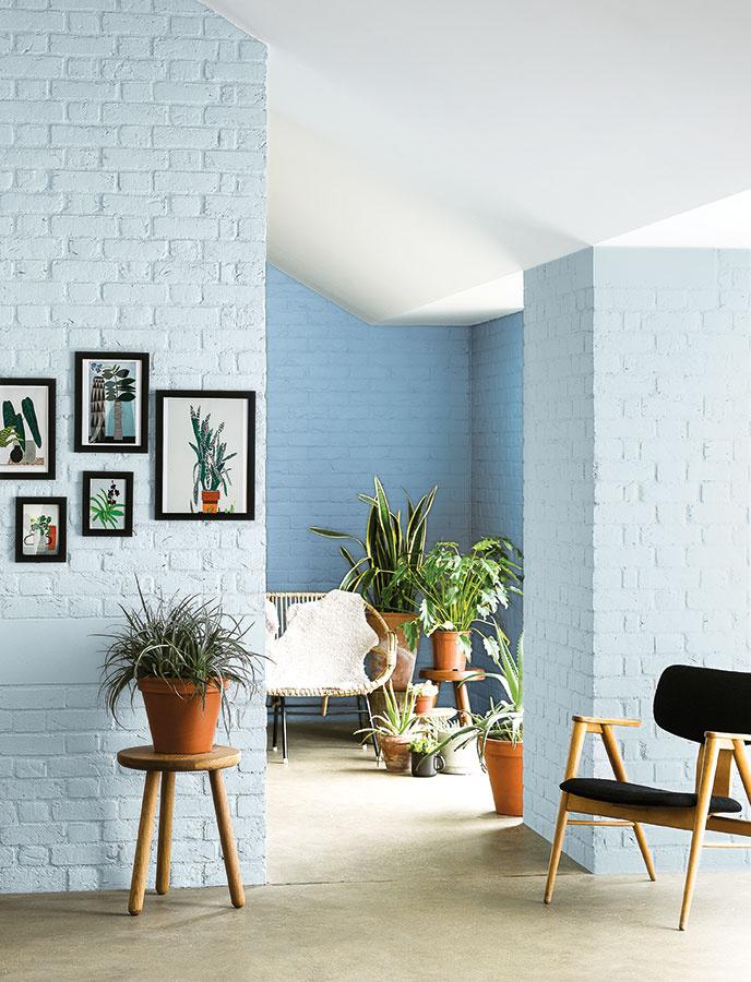 ZELENÁ MÁ ZELENÚ Kvetiny sú nadčasový interiérový prvok. Na to, aby ste si vytvorili domácu oázu, netreba veľa – stačí zoskupiť kvety s podobnými nárokmi na jedno miesto. Čím viac rôznorodosti, tým lepšie. A to platí aj o črepníkoch. Zelená v kombinácii s modrou sú osviežujúca kombinácia.