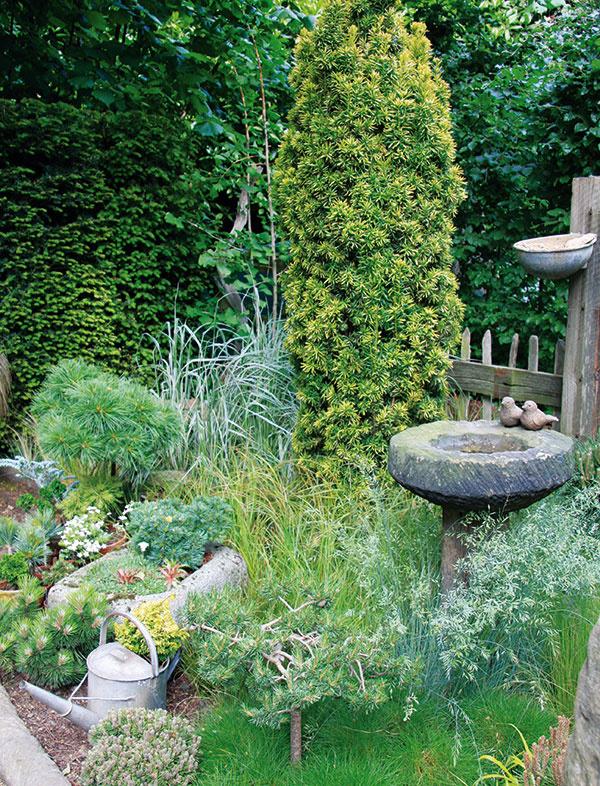 Stará studňa, drevená lavička, plechové vedrá, staré krhly… To všetko pomôže dotvoriť atmosféru.