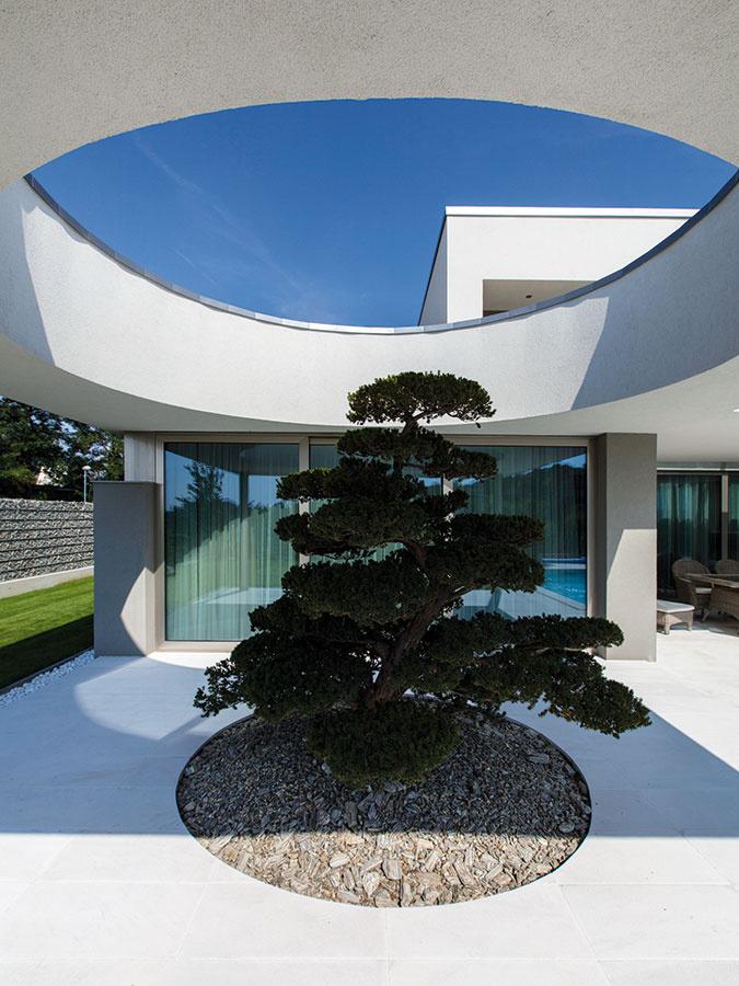 """Dom so stromom. Namiesto pôvodne plánovaných schodov na strešnú terasu je pred spálňou obrovský bonsaj – jeden zdobrých nápadov domáceho pána. """"Terasu na streche by som určite nevyužíval, keďže je dolu veľká záhrada,"""" hovorí. """"Takto umiestnený strom nielen skrášlil výhľad zo spálne, ale je takým wow efektom celého domu."""""""