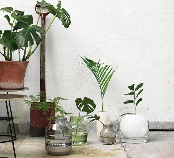 Univerzálna váza Elevated od značky Muuto, ručne fúkané sklo, jaseňové drevo, výška 21,9 cm, priemer 16,7 cm, aj v ružovej azelenej farbe, vponuke aj celosklenené akeramické modely, cena na vyžiadanie, Wemal