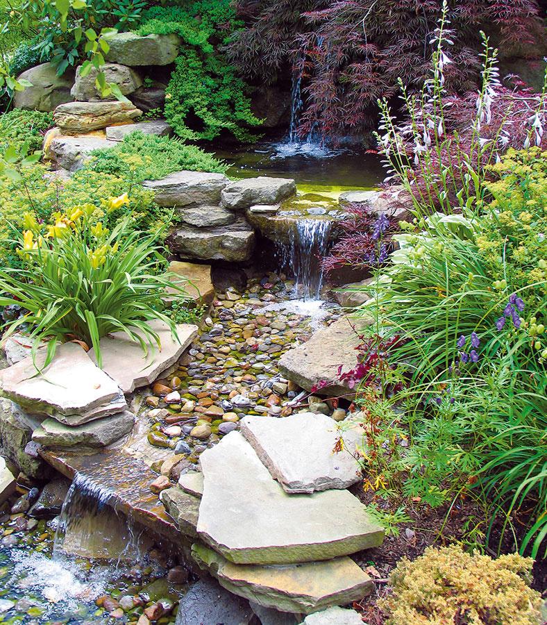Jazierka sa sobľubou umiestňujú do stredu záhrady, pričom často zvádza vysadiť knim tie najatraktívnejšie kvitnúce rastliny. Nebýva to však vždy najlepšie riešenie. Vzor, podľa ktorého treba postupovať pri výbere rastlín, je potrebné hľadať vprírode, resp. sa ňou aspoň inšpirovať.