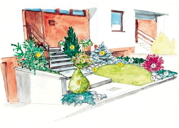 Ako tvarovať ihličnany v našej záhradke