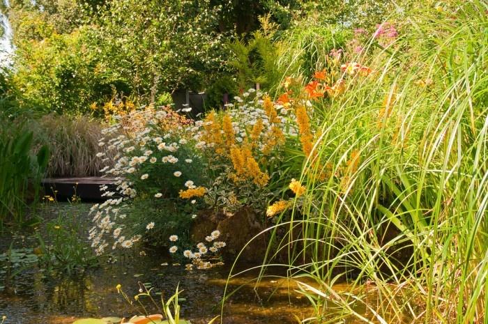 Jazierka v anglickej záhrade pôsobia vždy prirodzene.