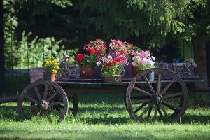 Anglická vidiecka záhrada je jednoducho balzamom na dušu