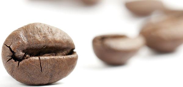 KÁVA Mletú kávu presypte zpôvodného obalu do uzatvárateľnej tmavej dózy alebo pohára auložte ju na suchom, ideálne aj na chladnom mieste. Jej aróma tak vydrží najdlhšie. Kávu môžete skladovať aj vchladničke, ale len vtedy, ak je pohár pevne uzatvorený anedostane sa doň vlhkosť.