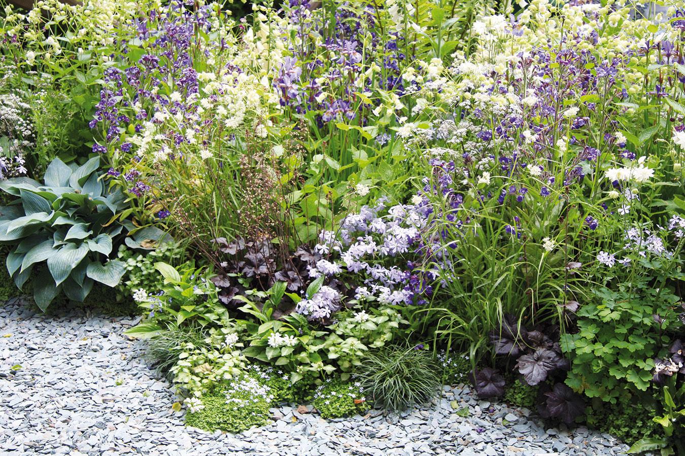 Štrk pôsobí ako prirodzená ochrana rastlín. Počas dňa kumuluje teplo avyžaruje ho do okolia, vďaka čomu pretrváva do nočných hodín. Rastliny tak podporuje vrýchlejšom raste azároveň chráni ich korene pred teplotnými výkyvmi akrčky pred napadnutím škodcami aochoreniami. Štrk zároveň zabraňuje premokreniu záhonov, ateda zahnívaniu koreňov vysadených druhov. Takúto výsadbu nemajú vobľube slimáky ašancu tu nemá ani burina. Veľkým plusom štrkových záhonov je aj to, že sa vpôde okolo výsadby udržiava optimálny počet užitočných mikroorganizmov.