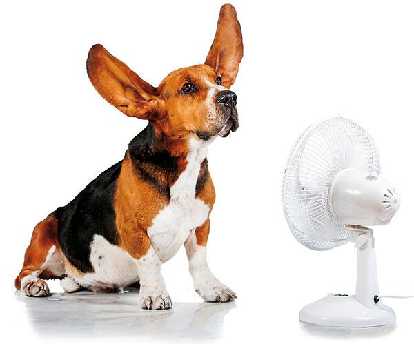 Moderné klimatizácie dokážu veci, o ktorých ste možno ani netušili