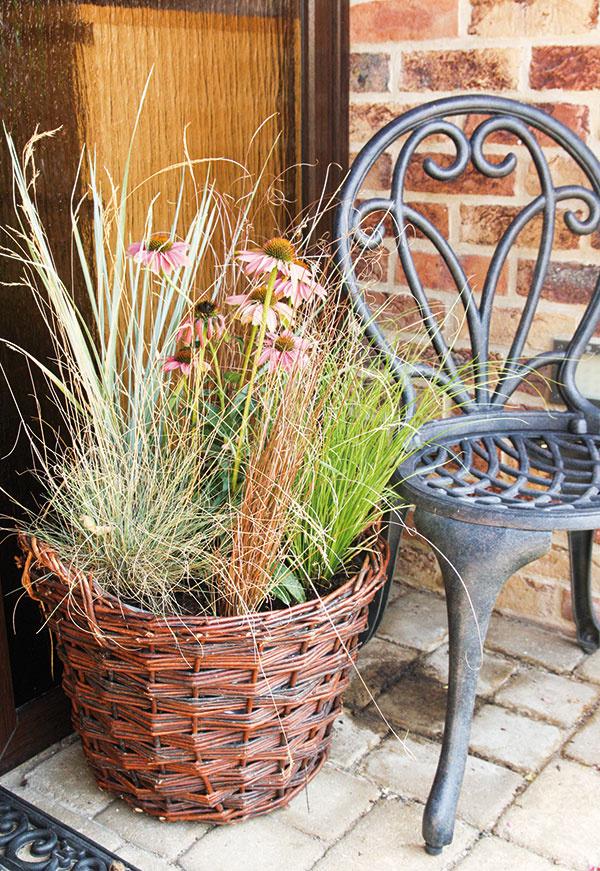 Do výsadby môžete použiť aj rôzne druhy okrasných tráv.