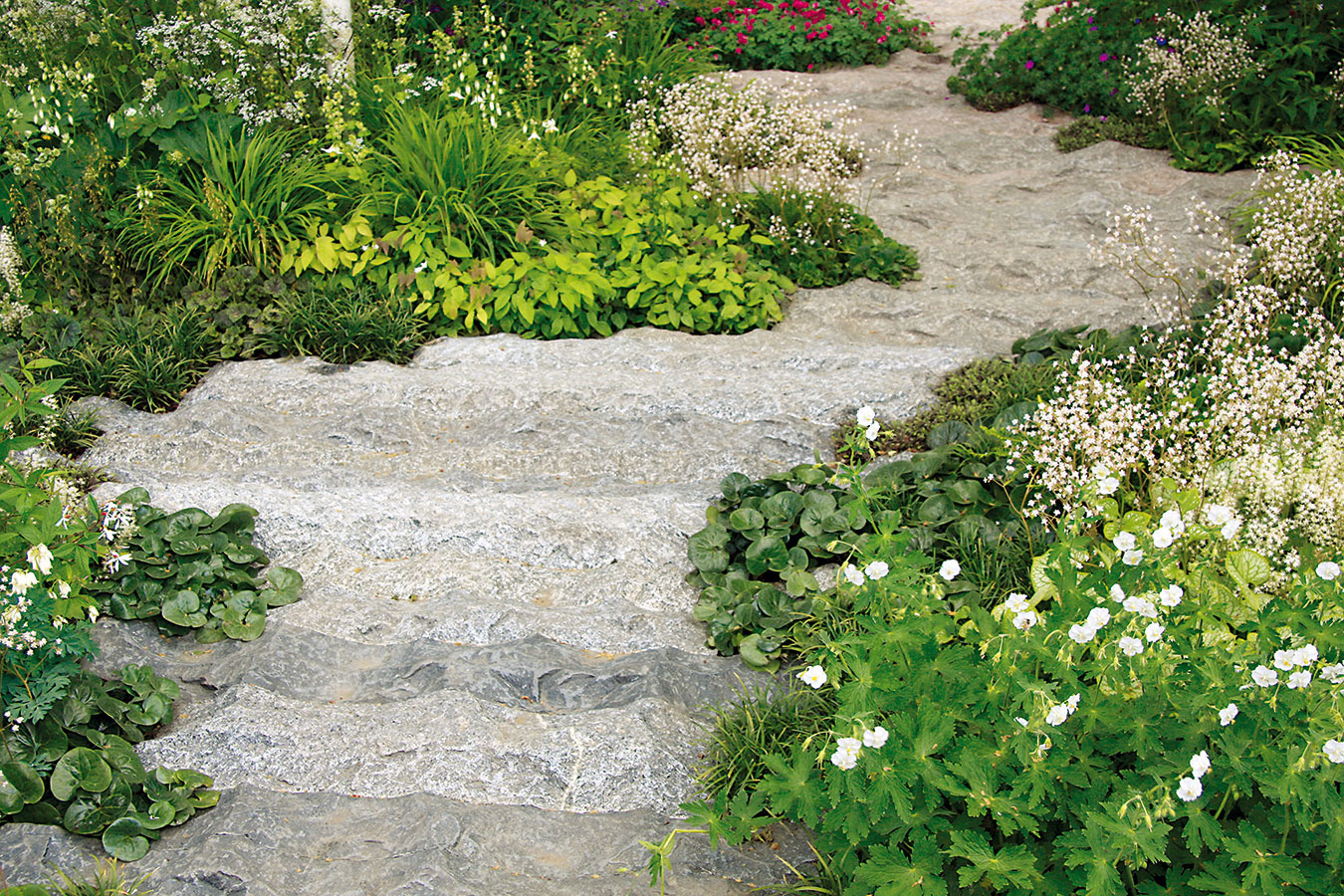 Betónový chodník môže mať podobu zurčiaceho potoka. Chôdza po ňom síce nie je najpohodlnejšia anenáročná nie je ani údržba, vmenej využívanej časti záhrady však môže predstavovať nevšedné spestrenie.
