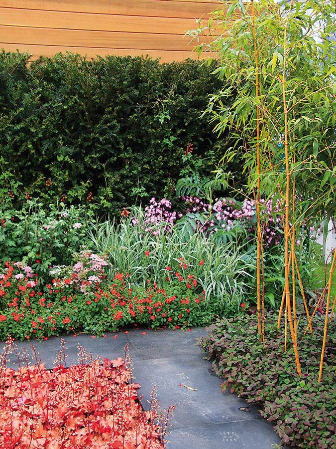 Chodník zkovových platní unás nepredstavuje bežné riešenie, výborne však doplní modernú záhradu. Okrem hlavných spevnených plôch možno takéto platne použiť aj na vedľajšie chodníčky. Mimoriadne atraktívne pôsobia vkombinácii svybranými rastlinami, napríklad bambusmi.