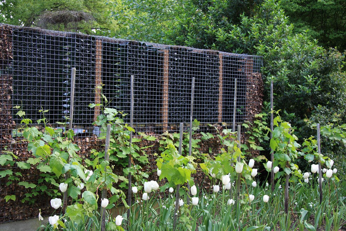 Sklené fľaše z vína, ktoré plánujete vyhodiť, môžu poslúžiť aj na založenie netradičného plota. Gabiony s takouto netradičnou výplňou sú vhodné do moderného mestského prostredia.