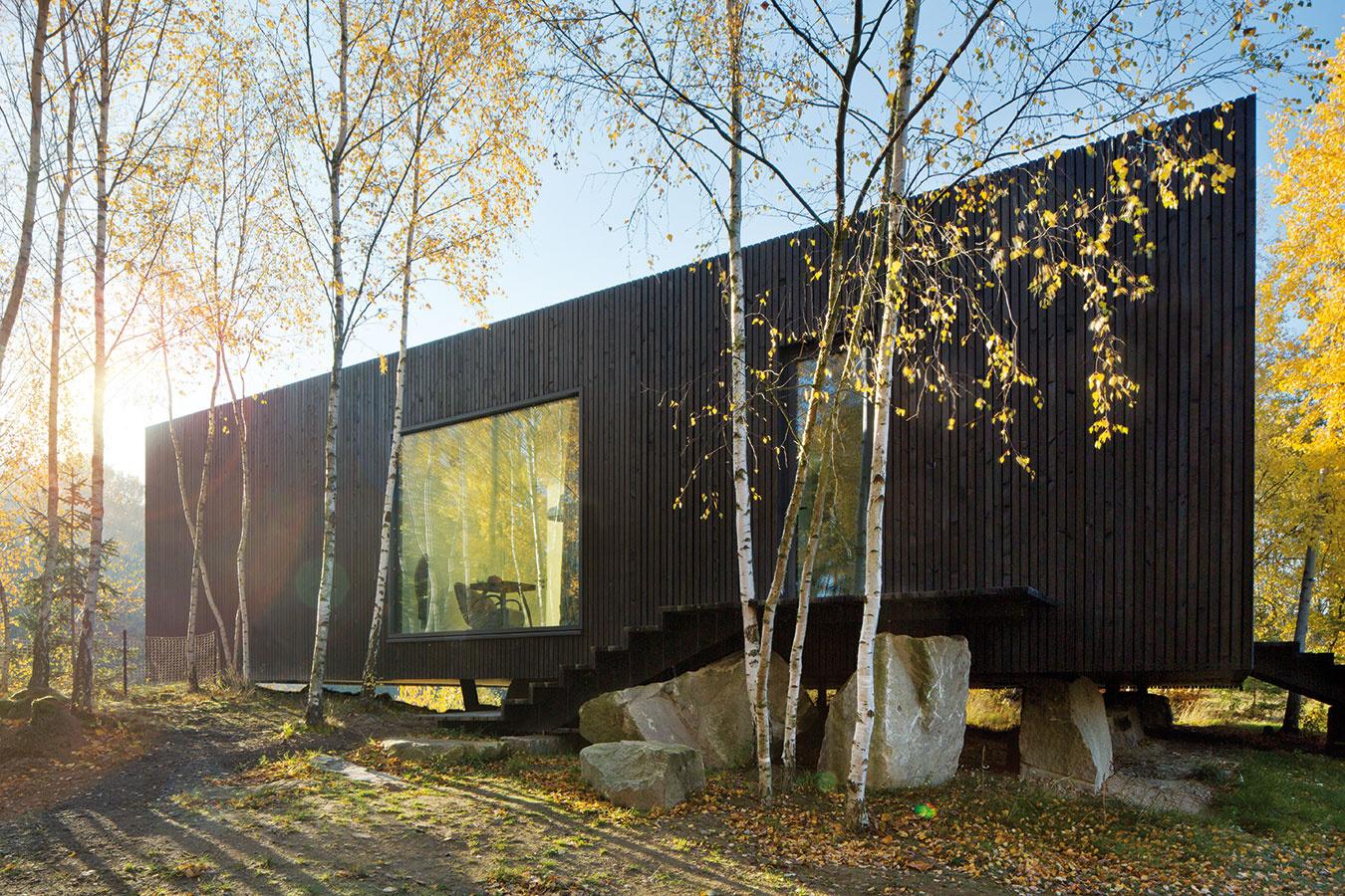 Scitom kprírode. Osadenie domu na žulových blokoch umožnilo ponechať pôvodné brezy aj vtesnej blízkosti stavby. (Pohľad na vstup do domu zo severovýchodu.)