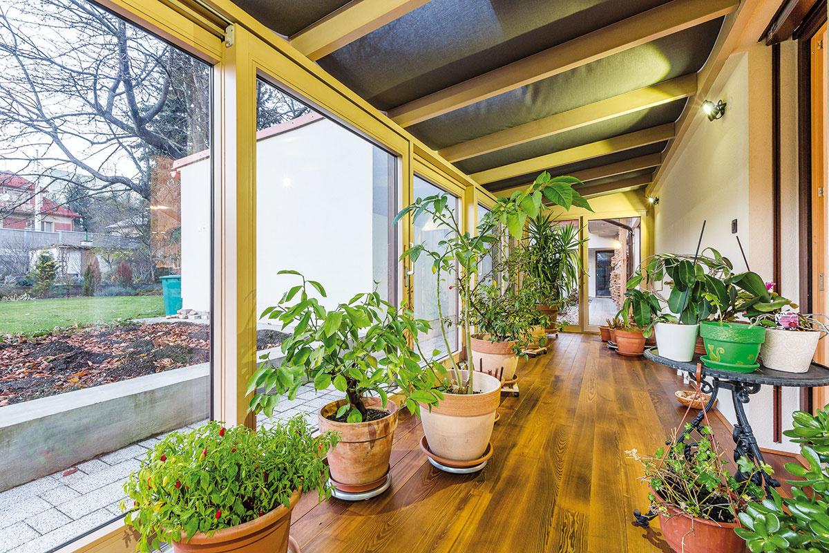 Miesto na prezimovanie rastlín bolo pri plánovaní nového domu jedným zdôležitých želaní majiteľky.