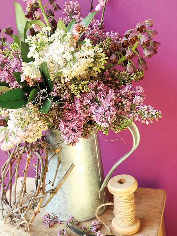 Orgován môže svojou peknou farbou, bohatými kvetmi a príjemnou vôňou krásne dotvoriť obývaciu izbu alebo jedáleň. Stavte na kombináciu fialových kvetov s bielymi a zaujímavú vázu, resp. nádobu.