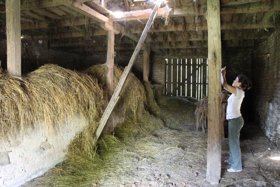 Láska z myjavských kopaníc: Odvážna rekonštrukcia stodoly v Brestovci!