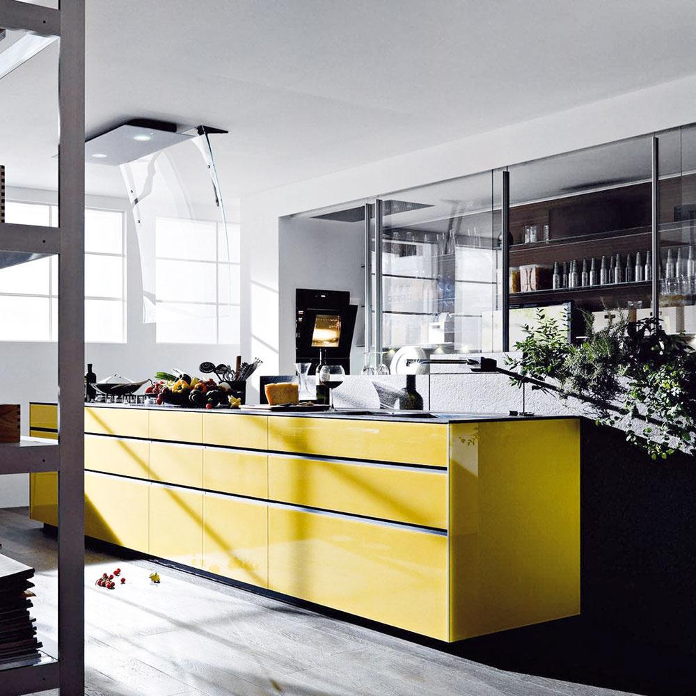 Značka Valcucine ponúka širokú ponuku rozmanitých riešení do každej kuchyne vrátane rôznych netradičných možností – unás menej používané materiály, napríklad sklo avzory na dvierkach. Predáva Zeno Showroom Bratislava aKošice.