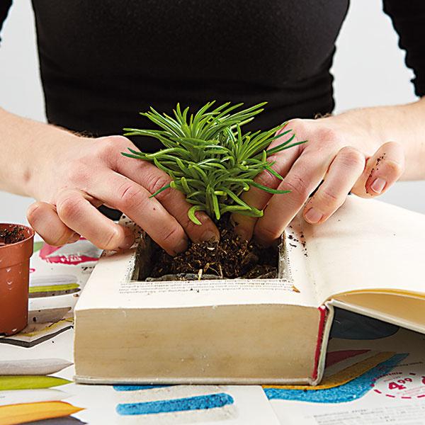 8. ZEMINA A RASTLINY Otvor vyplníme zeminou, následne do nej vysadíme mach a rastliny.