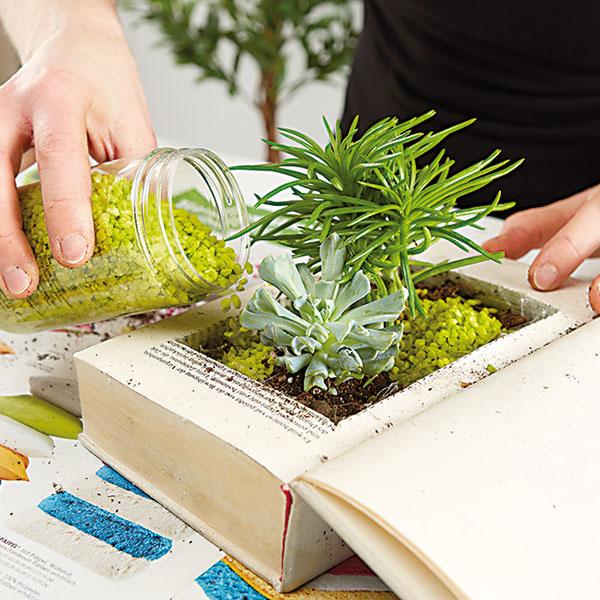 9. KAMIENKY Nakoniec priestor medzi rastlinami doplníme dekoračnými kamienkami alebo pieskom.