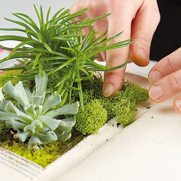 10. HOTOVO Naša interiérová záhradka je hotová, môžeme ju položiť napríklad na komodu.