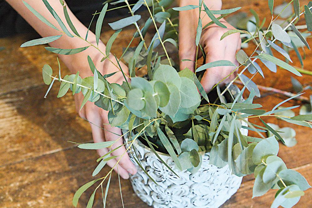 Do hmoty pozapichujeme oba druhy eukalyptu, čím vytvoríme kostru aranžmánu. Mal by siahať do 1,5- až 2-násobku výšky nádoby.