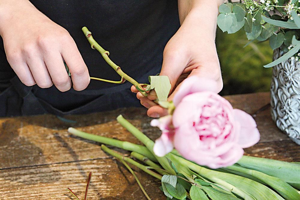 Pivonkám aj tulipánom odstránime listy. Pri vytváraní aranžmánu vždy pracujeme iba s odlistenými stonkami.