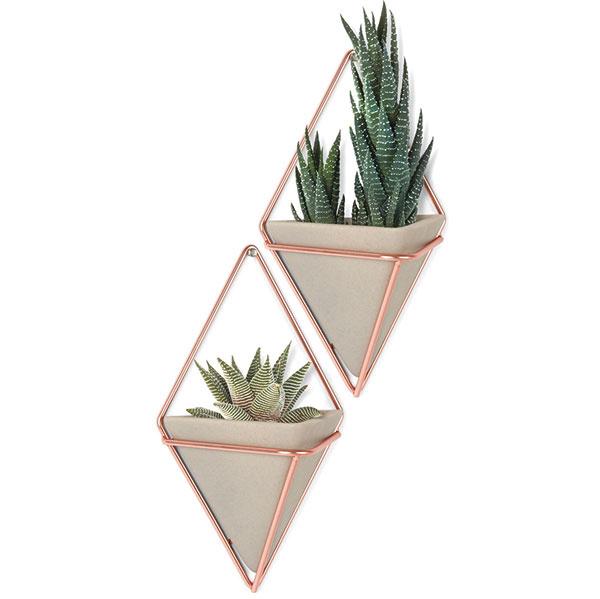 Alternatívou obľúbených závesných kvetináčov sú rôzne (spravidla menšie) nástenné modely, vktorých sa bude dariť najmä rastlinám sminimálnymi priestorovými požiadavkami. Zaujímavé riešenia vmedenom alebo zlatom vyhotovení ponúka značka Umbra.