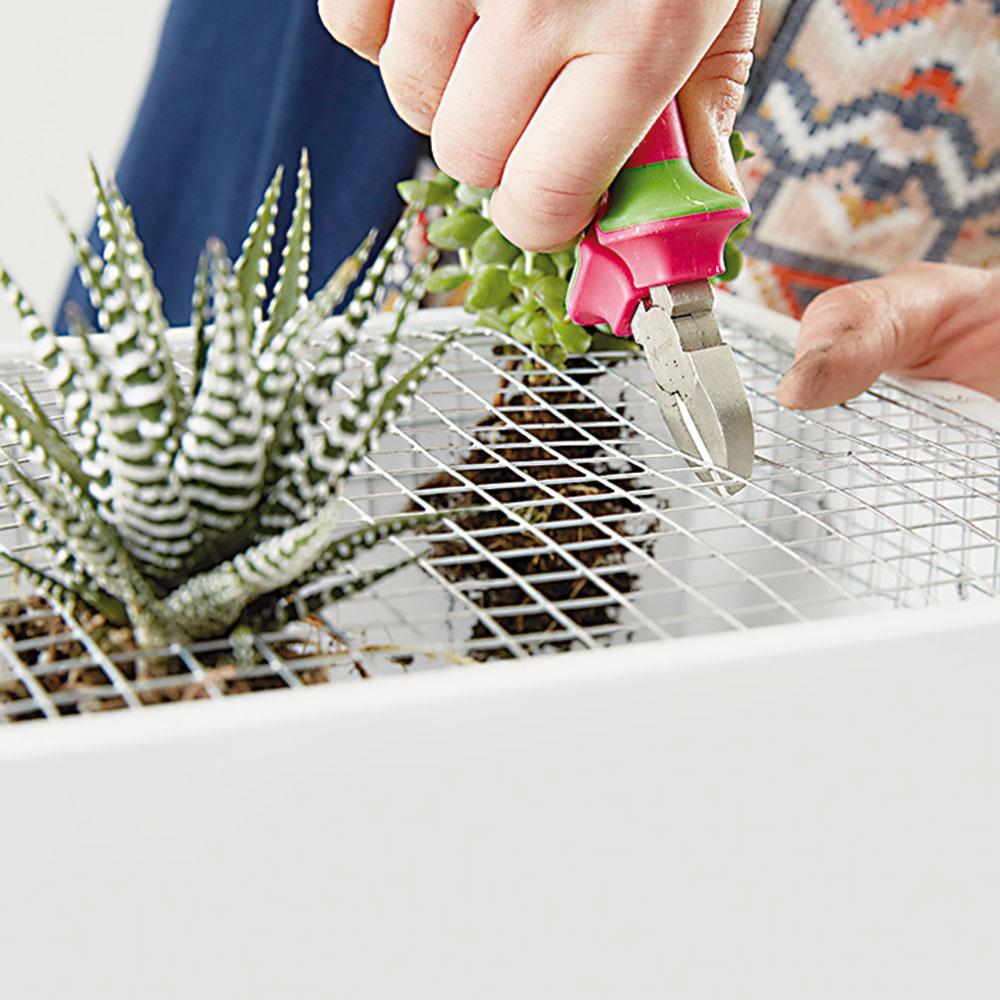 8. OTVORY Prichystaným rastlinám nájdeme optimálny priestor – urobíme im vmriežke otvory.