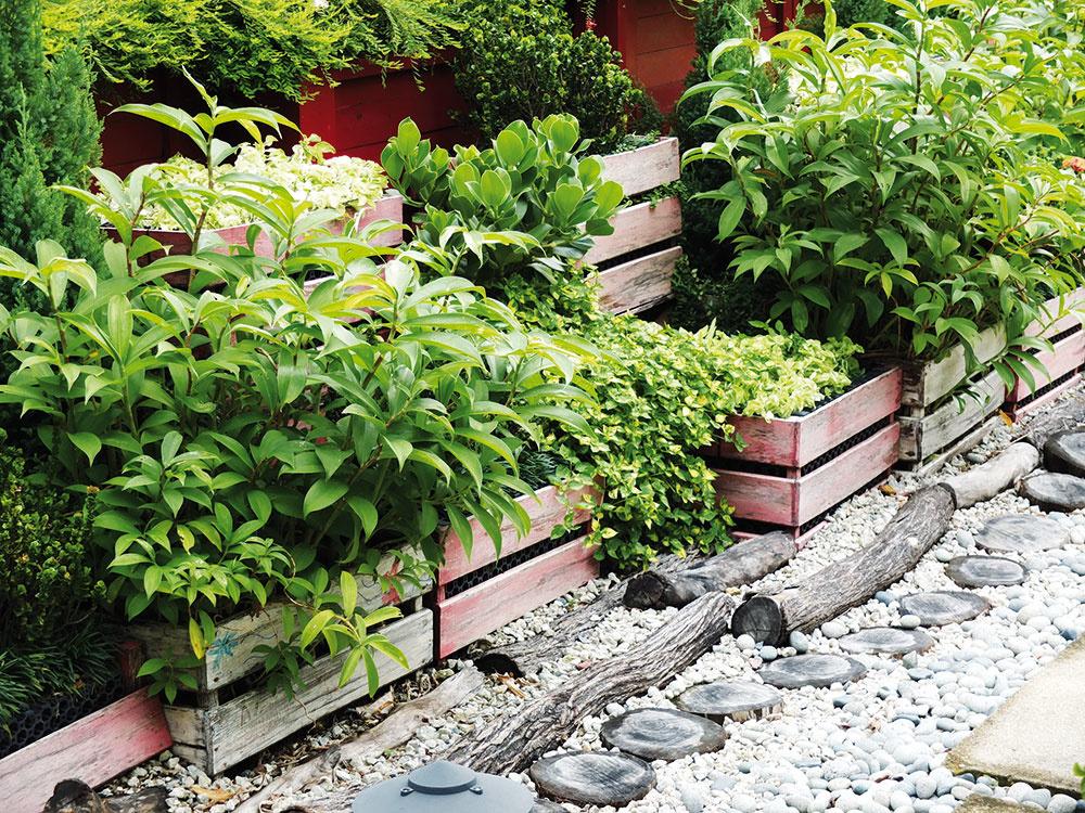#1 Debničkový záhon Po upratovaní povál apivníc zostane veľa nepotrebností. Drevené debničky po miernej úprave však môžete použiť na pestovanie rastlín aj na tom najmenšom dvore. Aj toto je spôsob, ako ušetriť za nákup vegetačných nádob.